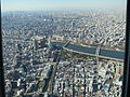 View of the Tokyo from Tokyo Sky Tree.JPG