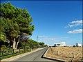 Vilamoura (Portugal) (50391019156).jpg