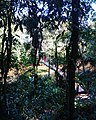 Visconde de Mauá 3.jpg