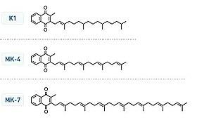 Vitamino K struktures.jpg