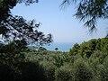 Vue du Gargano ouest.JPG