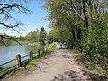 Vyžlovský rybník (007).jpg
