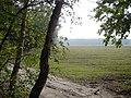 WILCZE ŁUGI wiosna 32 - panoramio.jpg