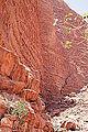 Wadi Rum - Jordanie 07-2012 (7631290810).jpg