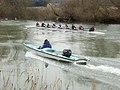 Wallingford Rowing Club in training - geograph.org.uk - 642066.jpg