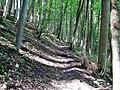 Wanderweg bei der Schwäbischen Alb - panoramio (1).jpg