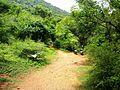 Way to SRI VALUKKUPARAI MUNIAPPAN TEMPLE and SRI JALAMKANDA MUNIAPPAN TEMPLE, Yercaud foot hill, Salem - panoramio (3).jpg