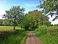Weg - panoramio (17).jpg