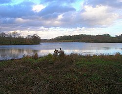 Weir Wood Reservoir - geograph.org.uk - 625023.jpg