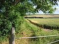 Wetwang - Footpath - geograph.org.uk - 203332.jpg