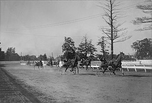 Harness racing - Harness racing in London, Ontario 1923