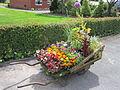 Wheelbarrow of flowers, Rainford.JPG