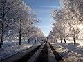 Winter tales - ainars brūvelis - Panoramio.jpg