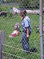 Wolf Park - C - Stierch.jpg