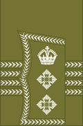 World War I British Army colonel's rank insignia (sleeve, general pattern)