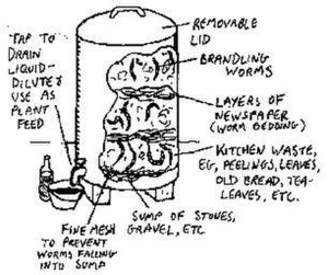 Vermicompost - Diagram of a household-scale worm composting bin