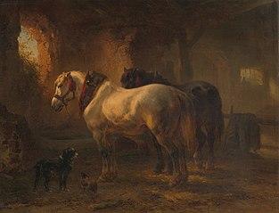 Stal met paarden