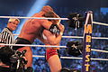 WrestleMania XXX IMG 4139 (13768579124).jpg