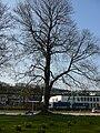 Wuppertal Engelsstr 0026.jpg