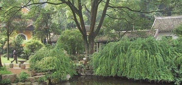 Yuelu-Academy-Hunan-pond
