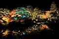 Yuushien Garden at night, Matsue City; November 2014 (11).jpg