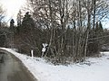 Zellbachtal GO-1.jpg