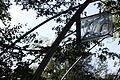 Ziffern im Wald 02.jpg