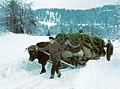 Zimski transport sena s planine v dolino.jpg