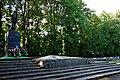 ! Вижниця (72) Братська могила радянських воїнів.jpg