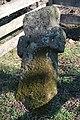 """Markov grob"" u Kalimanićima 01.jpg"