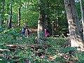 Štiavnické vrchy, značený chodník na Suť (01).jpg