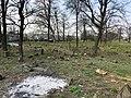 Іллінці, Єврейське кладовище.jpg