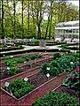 Ботанический сад (Петровский огород) - panoramio (4).jpg