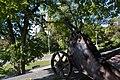 Гармата з бастіонів Чернігівської фортеці 74-101-0100.jpg