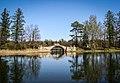 Горбатый мост 2015.jpg