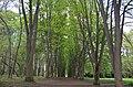 """Дендропарк """"Подолье"""" город Хмельницкий. Фото 16.jpg"""
