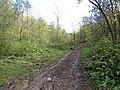 Дорога в пещеру - panoramio (1).jpg