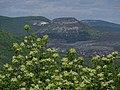 """Изглед към Венчанското кале под """"завивките"""" на ароматните цветове на мъждрян.jpg"""