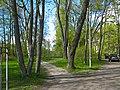 Кронштадт. Коммунистическая 1 (Макаровская), сад.jpg