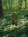 На кладбище - panoramio (3).jpg