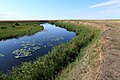 Речка Буртя в западном направлении - panoramio (1).jpg