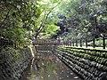 世田谷区立等々力渓谷公園 - panoramio.jpg