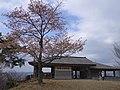 吉野山 高城山展望台 Takagiyama 2013.4.09 - panoramio.jpg