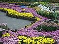 士林官邸參觀攝影 - panoramio - Tianmu peter.jpg