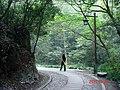 杭州. 杨梅岭(乾龙路) - panoramio (11).jpg
