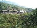 柴山 - panoramio.jpg