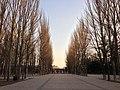 烏素圖公園 - panoramio (1).jpg
