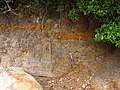 苺島層の正断層 Normal fault, Ichigoshima Formation - panoramio.jpg