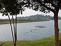 蘭潭 Orchid Lake - panoramio.jpg