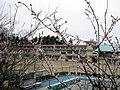 郡山市立行徳小学校 - panoramio.jpg
